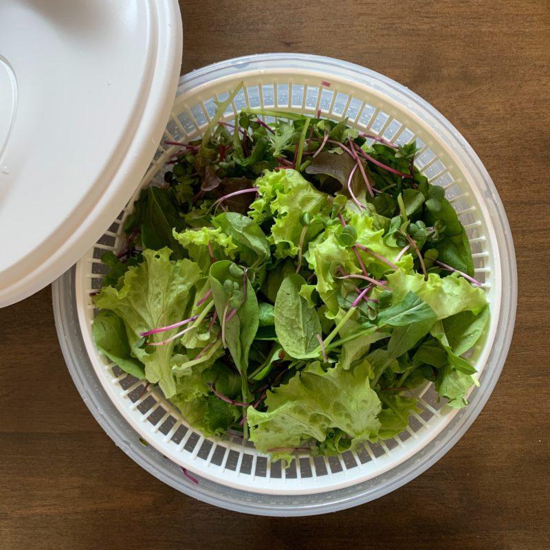 洗ったサラダ菜類をスピナーで水切り