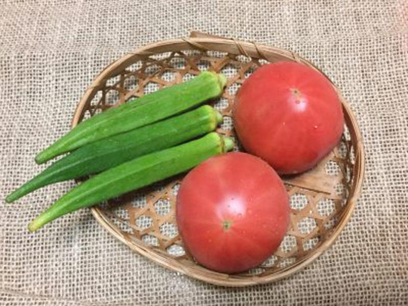 ピカピカの夏野菜!
