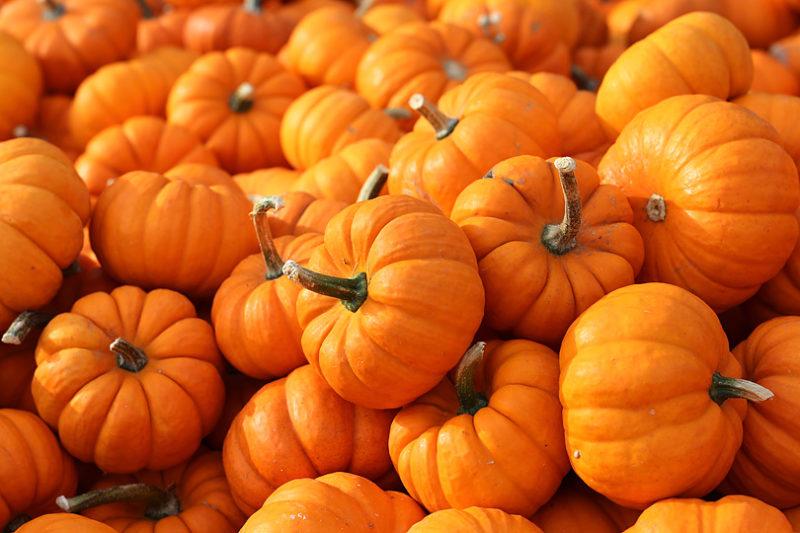 かぼちゃの旬はいつ?/旬の野菜と基礎知識