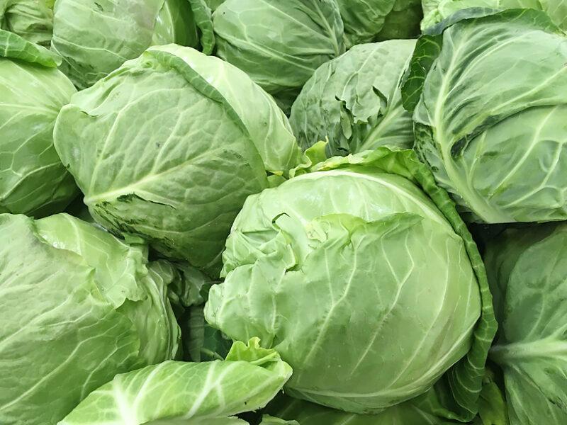 キャベツの旬はいつ?/旬の野菜と基礎知識