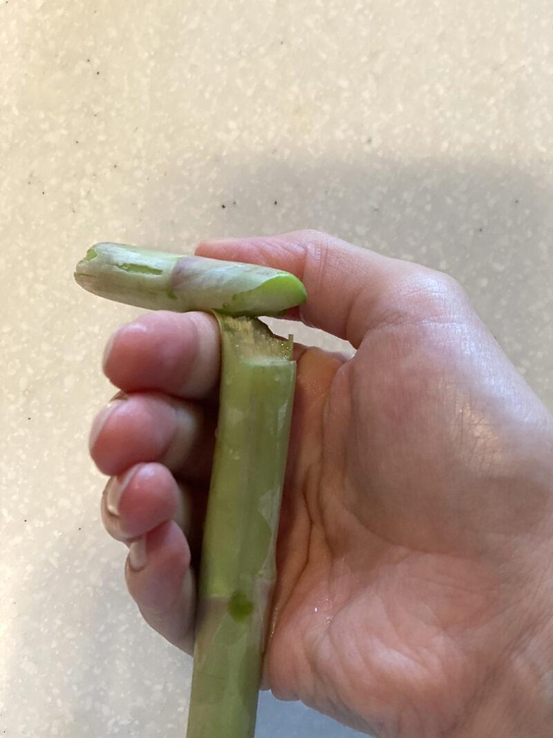 茎の部分を親指でポキッ